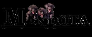 mendota-pet-show-sporting-cutout-v2